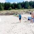 Cinghiale in spiaggia, bagnanti si buttano in acqua 2