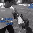 Come sopravvivere all'attacco di un cane, due metodi