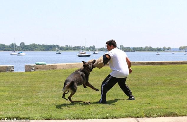 Come sopravvivere all'attacco di un cane, due metodi2