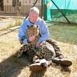 Cucciolo ghepardo incontra di nuovo il volontario: coccole e abbracci7