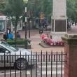 Donna defeca sul monumento ai caduti: arrestata3