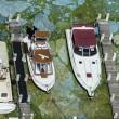 Florida, invasione di alghe verdi guacamole3