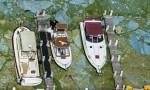 "Florida, invasione di alghe verdi ""guacamole"" FOTO: è stato d'emergenza"