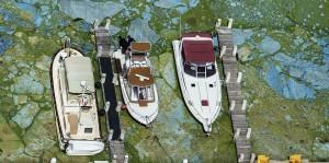 """Guarda la versione ingrandita di Florida, invasione di alghe verdi """"guacamole"""" FOTO: è stato d'emergenza"""