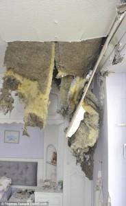 Guarda la versione ingrandita di Fulmine buca tetto casa FOTO: pensionata salva per miracolo