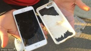 Guarda la versione ingrandita di Quel che resta dell'iPhone