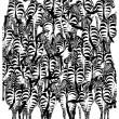 Illusione ottica: trova il tasso tra le zebre2