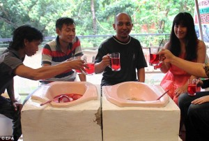 Indonesia cibo servito nelle latrine, water come sedie3