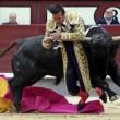 Madrid, torero incornato nella Plaza de Toros2