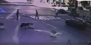 Guarda la versione ingrandita di YOUTUBE Pavel Sheremet, esplosione in auto del giornalista a Kiev