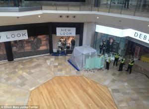 Guarda la versione ingrandita di YOUTUBE Scavalca ringhiera centro commerciale e si lancia: è gravissimo
