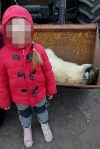 Selfie con orso morto nel cassonetto2