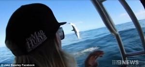 """Squalo salto """"backflips"""" fuori dall'acqua accanto ai pescatori3"""