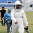 Vespe invadono campo e spalti: partita sospesa in Ecuador5