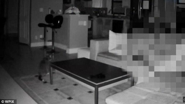 Lascia chiavi a dog sitter: guarda telecamera in soggiorno5
