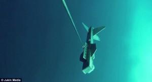 Squalo bianco morde drone marino
