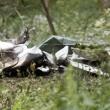 Slovenia: FOTO aereo precipitato con quattro persone5