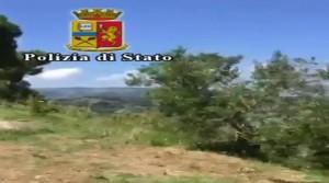 Guarda la versione ingrandita di VIDEO YOUTUBE 'Ndrangheta, latitante Giuseppe Alvaro arrestato