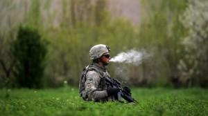 Cannabis da legalizzare: capo Antimafia con gli antiproibizionisti