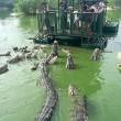 Coccodrilli circondano turisti su zattera2