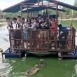 Coccodrilli circondano turisti su zattera6