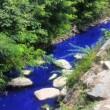 """Cambiago, il fiume è blu elettrico. Ma l'acqua """"non è tossica"""""""