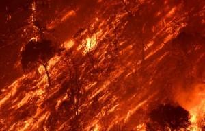 Incendio in California: fiamme e vento, una vittima FOTO