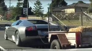 Lamborghini trasporta capre col rimorchio5