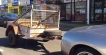 YOUTUBE Lamborghini trasporta capre col rimorchio