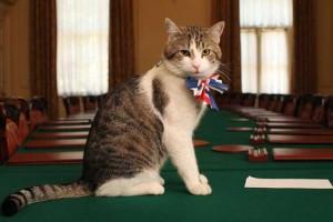 Brexit fa fuori Cameron ma il gatto Larry resta a Downing Street