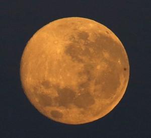 Guarda la versione ingrandita di Luna nuova in cielo. Guarda in alto e...esprimi un desiderio