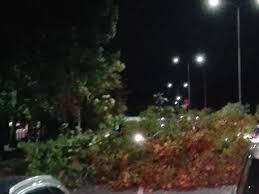 Maltempo a Milano, violento temporale abbatte alberi: 2 ragazze ferite