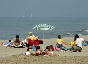 Guarda la versione ingrandita di Marina di Massa, alga tossica: porta febbre, crisi respiratorie... (foto Ansa)