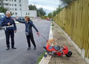 Viadana: bimbo di 6 anni cade da minimoto. E' gravissimo