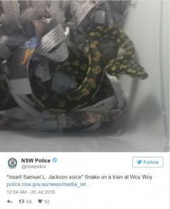 Guarda la versione ingrandita di Tira fuori pitone in treno, polizia glielo sequestra FOTO