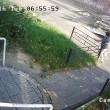 Autobus finisce contro la fermata: donna illesa per miracolo6