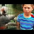 YOUTUBE Bambine la infastidiscono, la scimmia si vendica6