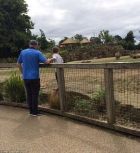 Guarda la versione ingrandita di Bambino scavalca recinto rinoceronti zoo per scattare selfie