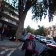 Ciclista sbatte su taxi che non ha messo la freccia4