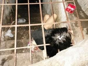 Cina, donna malata di mente vive in gabbia nello scantinato FOTO5