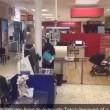 Gabbiano vola tra gli scaffali: supermercato viene fatto sfollare5