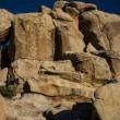 Illusione ottica: riesci a trovare il bambino tra le rocce2