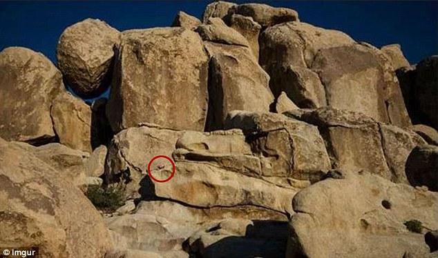 Illusione ottica: riesci a trovare il bambino tra le rocce