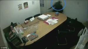 Ladri mascherati entrano nel magazzino e sparano al proprietario 9