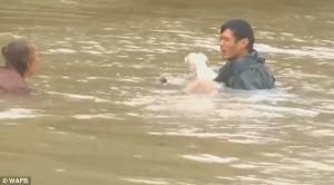 Guarda la versione ingrandita di YOUTUBE Louisiana, salva donna e cane da auto che affonda