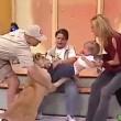 Messico, leone cerca di aggredire bambina in diretta