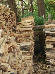 Guarda la versione ingrandita di Riesci a trovare il gatto tra i ciocchi di legno? FOTO