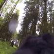 """YOUTUBE Cane con GoPro """"scopre"""" Bigfoot nel bosco"""