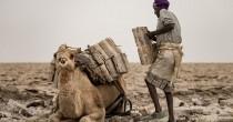 YOUTUBE Etiopia, nelle miniere di sale della regione di Afar, a 60 gradi