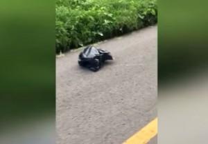 VIDEO YOUTUBE Sacco nero si muove in strada: si ferma e trova...